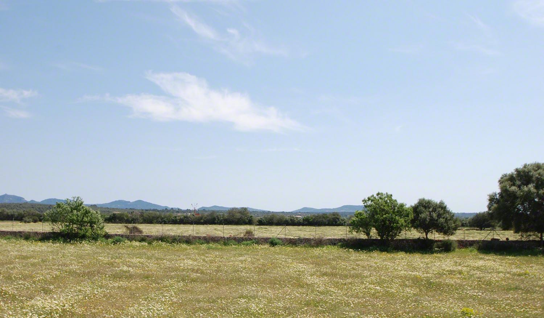 Baugrundstück nur 2 km von Campos entfernt
