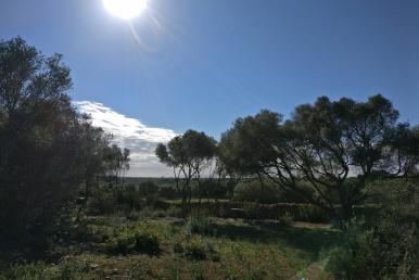 Meerblickgrundstück bei Ses Salines Mallorca